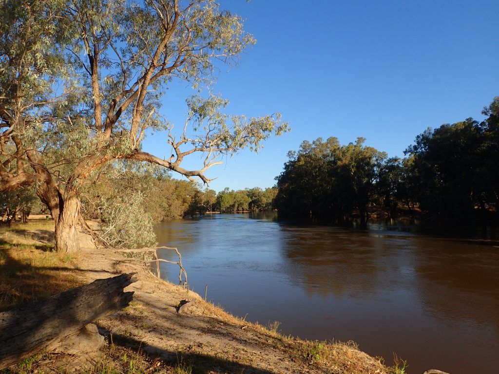 Darling River Upstream