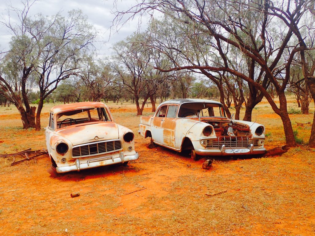 Rusting cars in the outback