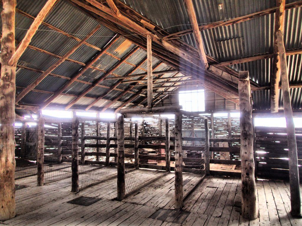 Mungo woolshed historical building